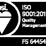 BSI logo white
